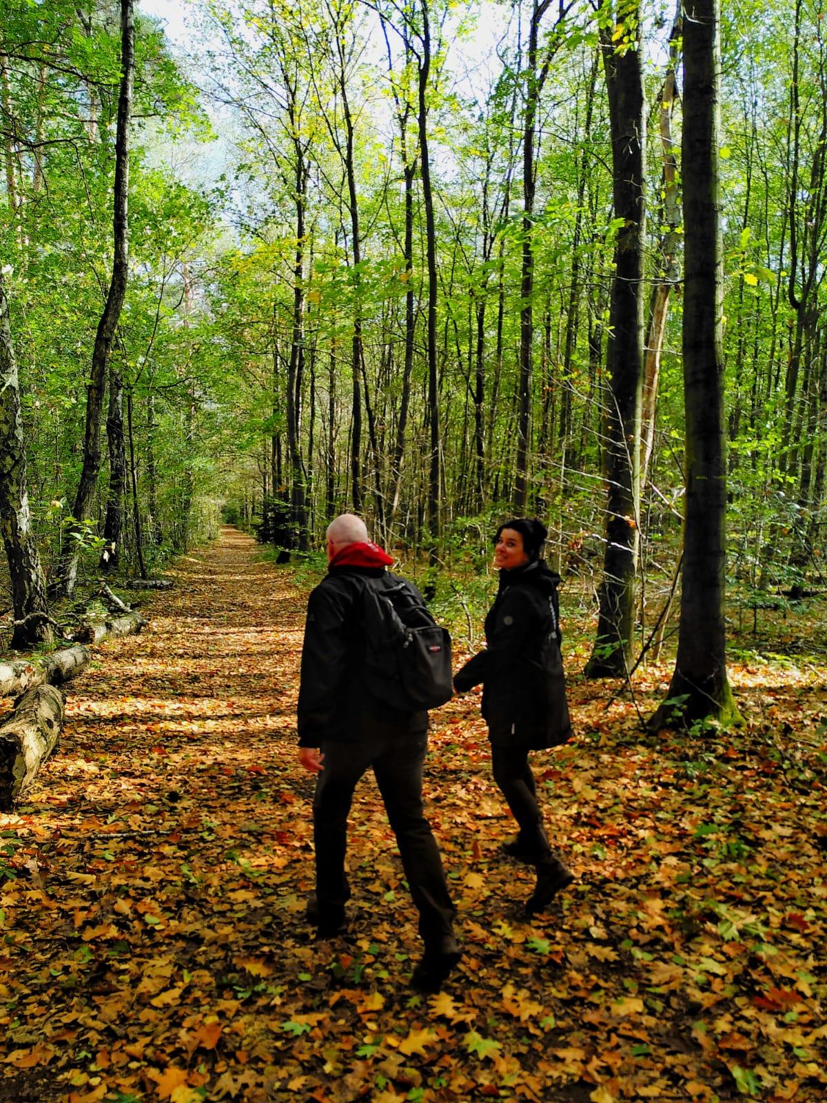 Im Wald 2